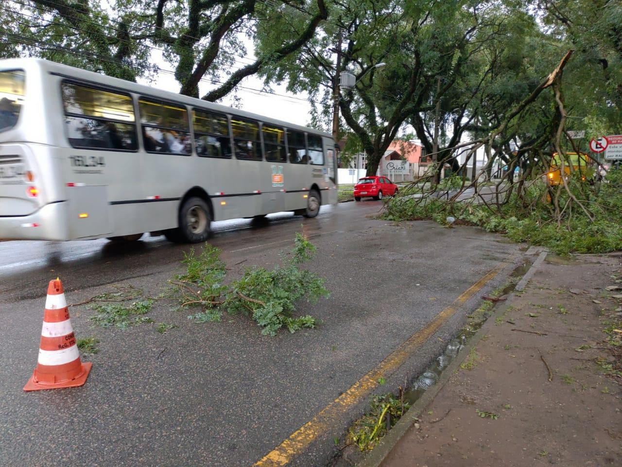 Prefeitura mobiliza equipes para atender ocorrências das chuvas