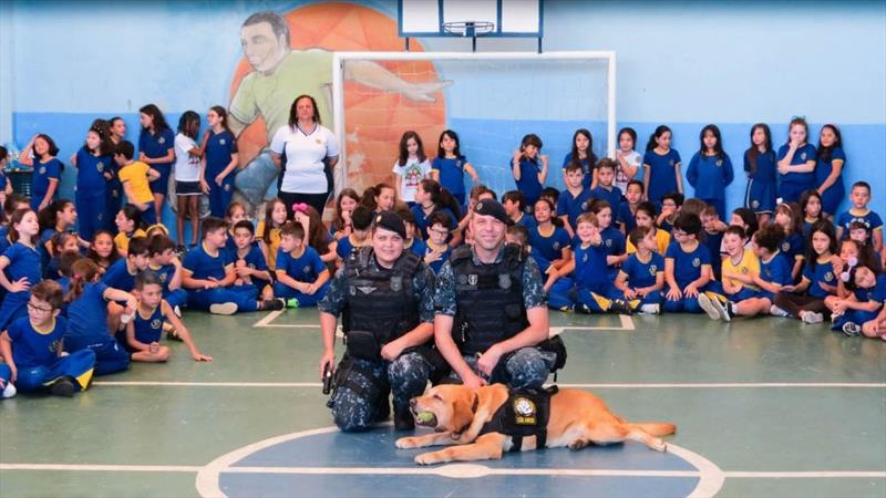 Mais de 4,5 mil crianças participam do projeto Cão Amigo